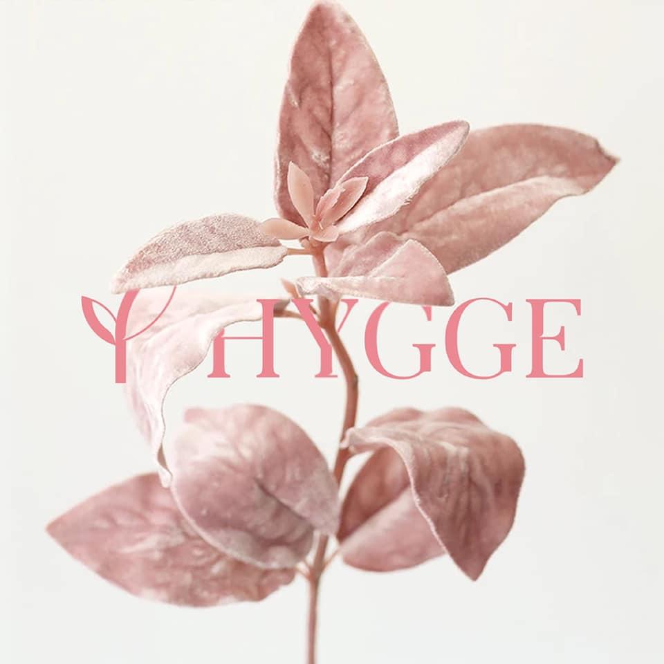 кейс для Hygge Cosmetology від креативної агенції Партизан м. Луцьк (PaRtyzan)